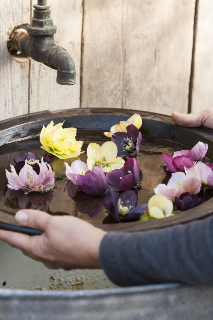 Floating the flowers in a bowl allows you to really enjoy the flowers at the table, generally when its still too cold to spend a lot of time admiring them outside.